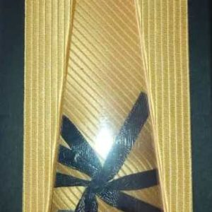 Buy the MMU Tie at our online shop (mmunbc.org/pay) at 2,500 Naira - Men's Missionary Union of the Nigerian Baptist Convention